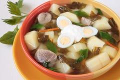 Frühlingssuppe mit Sauerampfer, Nesseln und Kartoffeln Stockfoto