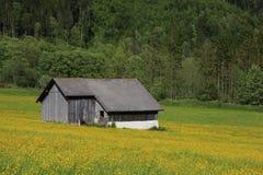 Frühlingsszene in der Schweiz Lizenzfreie Stockfotografie