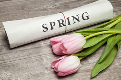 Frühlingstext auf Zeitung Stockbild