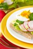 Frühlingstoast mit Gemüse und Ei. Stockfoto