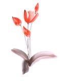 Frühlingstulpen mit roten Blumen auf einem weißen Hintergrund Getrennt watercolor Lizenzfreie Stockbilder
