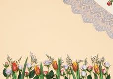Frühlingstulpen- u. -rosenhintergrund stock abbildung