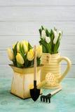 Frühlingstulpen in yelow Vase und Gießkanne Lizenzfreie Stockfotografie