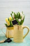 Frühlingstulpen in yelow Vase und Gießkanne Stockbild