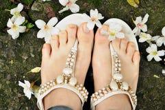 Frühlingstungs-Blüte und Schmucksandale , Luxushintergrund Stockfotografie