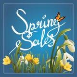 Frühlingsverkäufe callygraphy Hintergrund- oder Quadratfahne Stockbild
