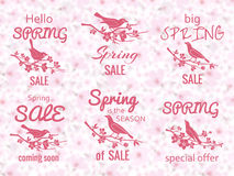 Frühlingsverkaufsaufkleber mit Kirschblütenhintergrund vektor abbildung