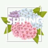 Frühlingsverkaufshintergrund Stockbild