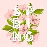Frühlingsverkaufshintergrund mit schöner rosa Blume und Blatt Stockbild