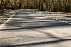 FrühlingsWaldweg mit Schatten in Moskau-Region, Russland Stockbild