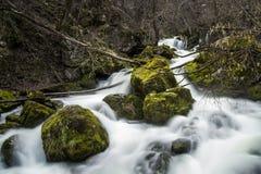 Frühlingswasserfall Stockfoto