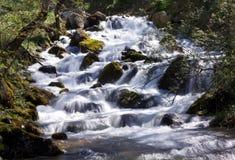 Frühlingswasserfall Lizenzfreie Stockfotos