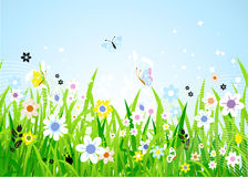 Frühlingswiese schön Stockfoto