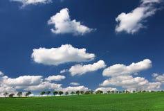 Frühlingswiese und erstaunlicher Himmel Lizenzfreie Stockbilder
