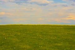 Frühlingswiesen-Gelbvergewaltigungen und gesetzter Himmel der Sonne lizenzfreies stockbild