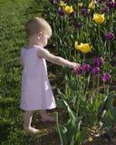 Frühlingszeit Lizenzfreie Stockfotografie