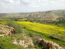 Frühlingszeit in Algerien Lizenzfreie Stockfotografie