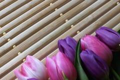 Frühlingszeit, Frühlingsfarben, Blumen und Kerzen, Rosa, Purpur, reizende Zeit, netter Geruch, reizende Farben, romantische Farbe lizenzfreie stockbilder