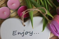 Frühlingszeit, Muttertag, Blumen und Kerzen, Rosa, Purpur, reizende Zeit, netter Geruch, reizende Farben, romantische Farben, Val lizenzfreie stockbilder