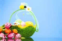 Frühlingszeit… Rosenblätter, natürlicher Hintergrund Lizenzfreie Stockfotografie