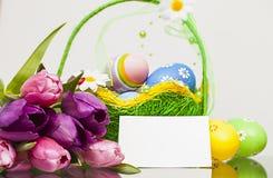 Frühlingszeit… Rosenblätter, natürlicher Hintergrund Lizenzfreies Stockbild