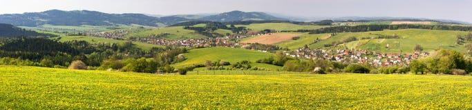Frühlingszeit und -wiese mit geläufigem Löwenzahn (Taraxacum) - Karpatenberg Lizenzfreies Stockfoto