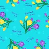 Frühlingszeitmuster Lizenzfreie Stockbilder