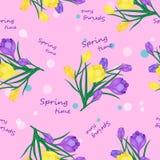 Frühlingszeitmuster Lizenzfreies Stockfoto