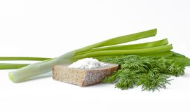 Frühlingszwiebeln, Dill, Roggenbrot mit grobem Salz lizenzfreie stockfotografie