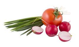Frühlingszwiebeln, -tomate und -rettich Stockfotografie