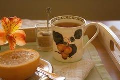 Frühstück auf einem Behälter Stockfotografie