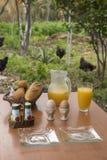 Frühstück gegründet in einem Bauernhof Lizenzfreie Stockfotografie
