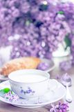 Frühstück mit Milch, Brot mit Gouda-Käse Lizenzfreies Stockfoto