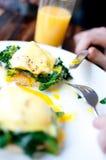 Frühstückeier Benedict Stockbild