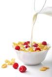Frühstückskost aus Getreide Stockfotografie