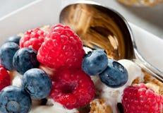 Frühstückskost aus Getreide mit Blaubeeren und Himbeeren Lizenzfreie Stockfotos