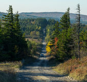 FR-75 in Dolly Sods Wilderness | West Virginia Lizenzfreies Stockbild