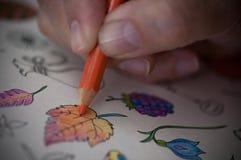 för färgläggningdiagram för bok färgrik illustration Royaltyfria Foton