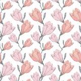 För Grey Vintage Magnolia Flowers Fabric för vektor som rosa hand Retro upprepande sömlös modell dras i botanisk stil perfekt Royaltyfria Bilder
