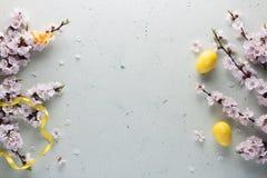 Fr?hliche Ostern Frühlingsblumen, helle farbige Eier Heller Hintergrund lizenzfreie stockbilder