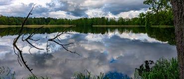 Fr?hlingsnachmittag in dem Teich, Oberfl?che des flachen Wassers stockfotos