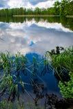 Fr?hlingsnachmittag in dem Teich, Oberfl?che des flachen Wassers lizenzfreies stockfoto