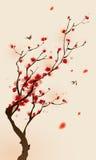 för målningsplommon för blomning orientalisk stil för fjäder Arkivbild
