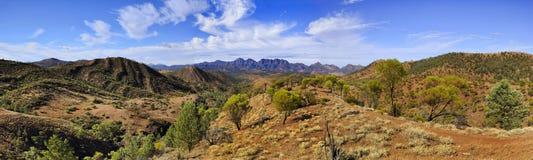 FR panorama för Wilpena 01 drevhorisont Royaltyfri Foto