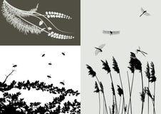 för setsilhouette för gräs verklig vektor Royaltyfria Foton