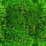 Texture sans couture d'herbe image stock