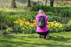 Fra i fiori nel parco Fotografia Stock
