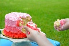 Fracas de gâteau Photos libres de droits