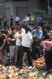 Fracas de noix de coco images stock
