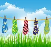 Fracasos de tirón coloridos del verano Imagen de archivo libre de regalías